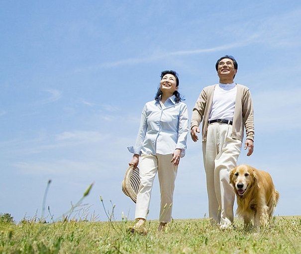 Як повернути дружину після розлучення: поради психологів