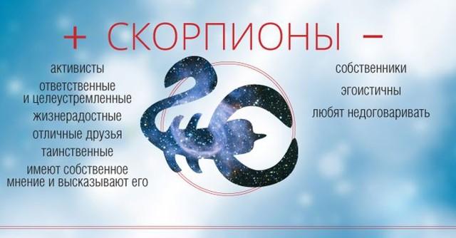 Сумісність Скорпіона і Риб: єднання в бурхливому океані життя