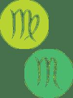 Сумісність Діви і Скорпіона: тандем критики і владності