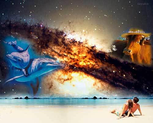 Сумісність Риб і Тельців: ідилія двох несхожих людей