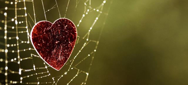 Як позбутися від закоханості: план дії і поради психологів