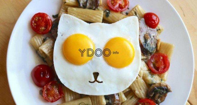 яєчня у вигляді котячої мордочки